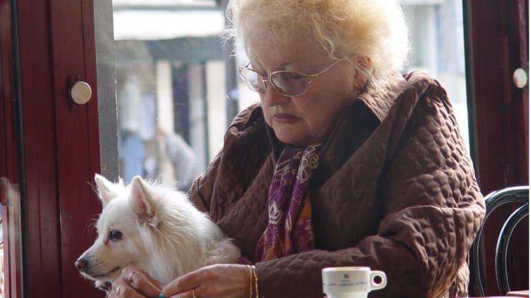 Ask the Vet: My Dog Ate Excedrin Migraine Pills