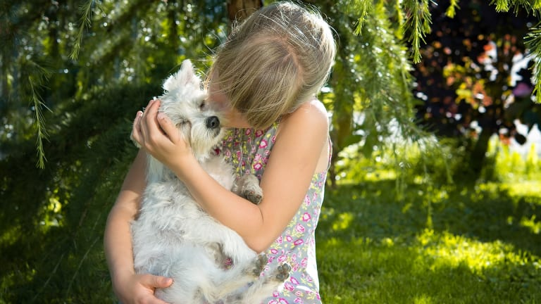 Discovering Why Dogs Like Having Their Ears Rubbed