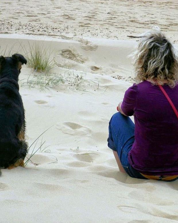 woman-and-dog-1827593_640