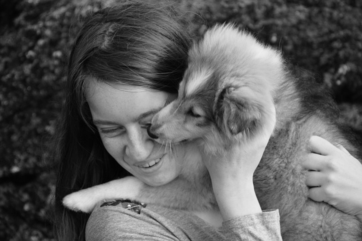 A puppy biting your face constantly isn't a very pleasant interaction