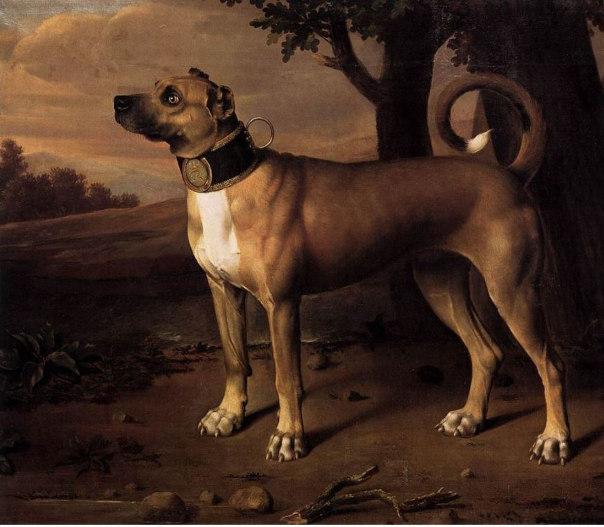 "A ""chamber dog"" with a gilded collar, Bradenburg (Germany), 1705"