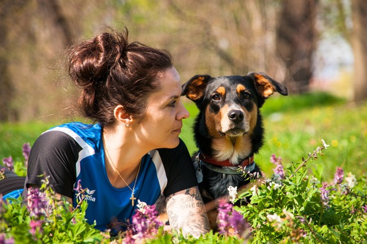 Dogs are very tuned-in to their owners and readily detect physical and emotional changes