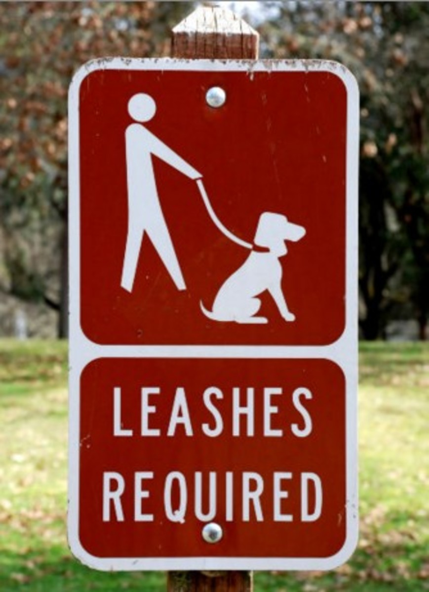 Leash laws are in place.