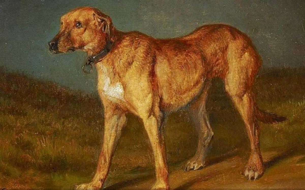 Rhodesian ridgeback, by Carl Friedrich Schulz (1796–1866)