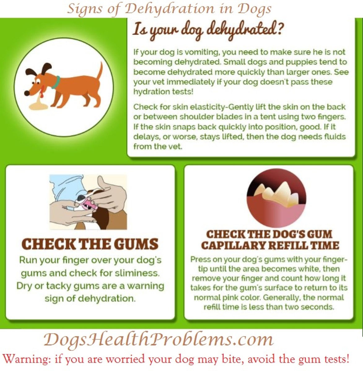 ... he can become dehydrated quite quickly. There are several causes of vomiting in dogs that require treatment in order to make the vomiting stop.  sc 1 st  Dogs Health Problems & Recognizing Dehydration in a Vomiting Dog - Dogs Health Problems