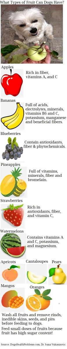 dog fruit