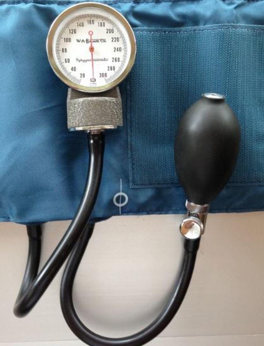 dog blood pressure