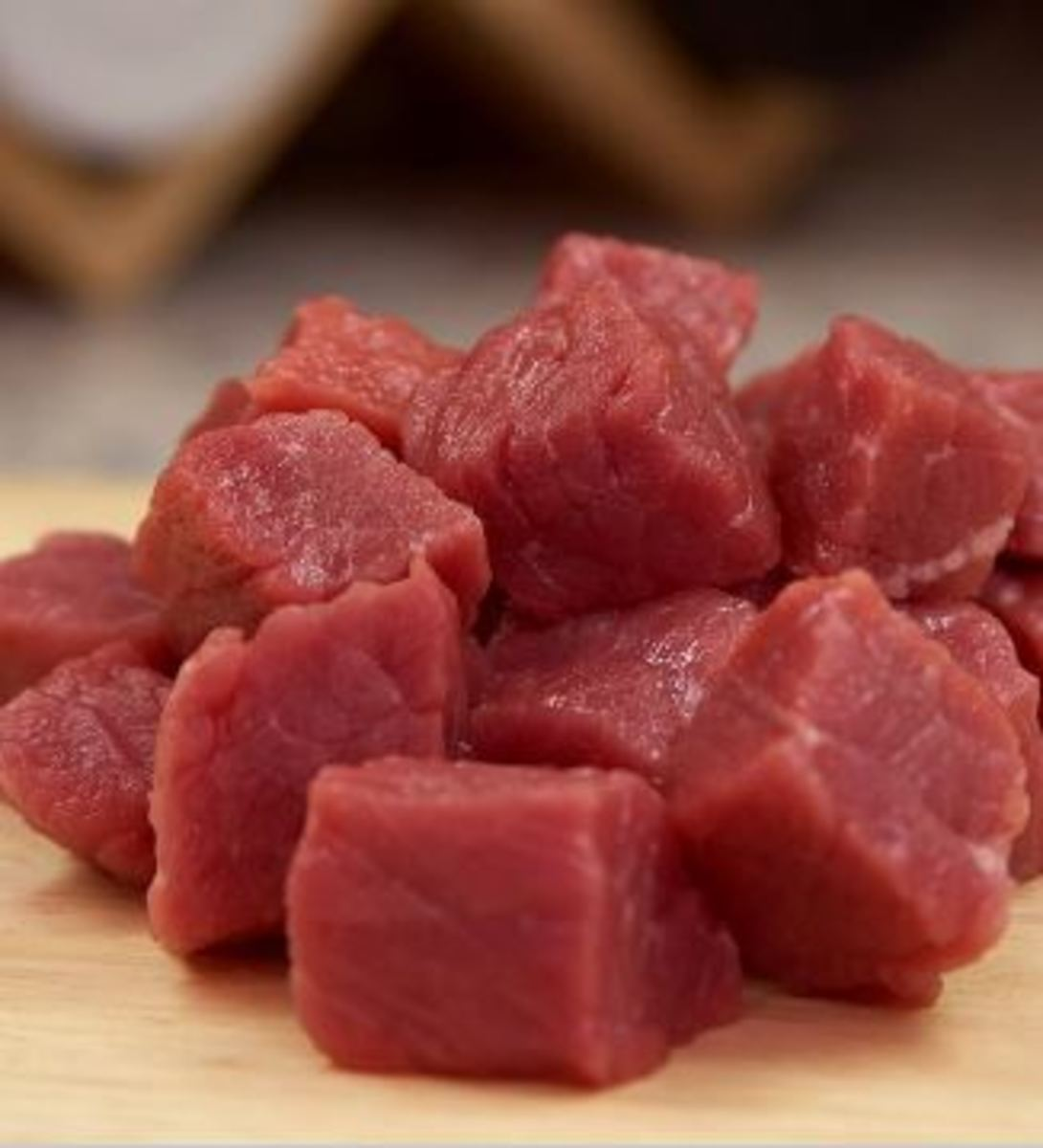 There are several pros and cons of a raw diet for dogs.