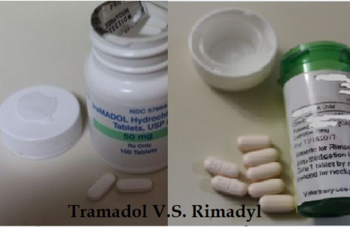 Difference between rimadyl and tramadol for dogs
