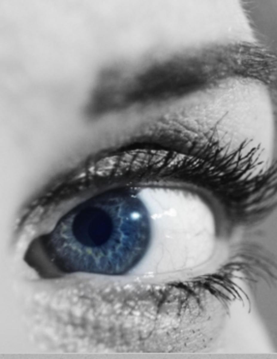 human eye sclera