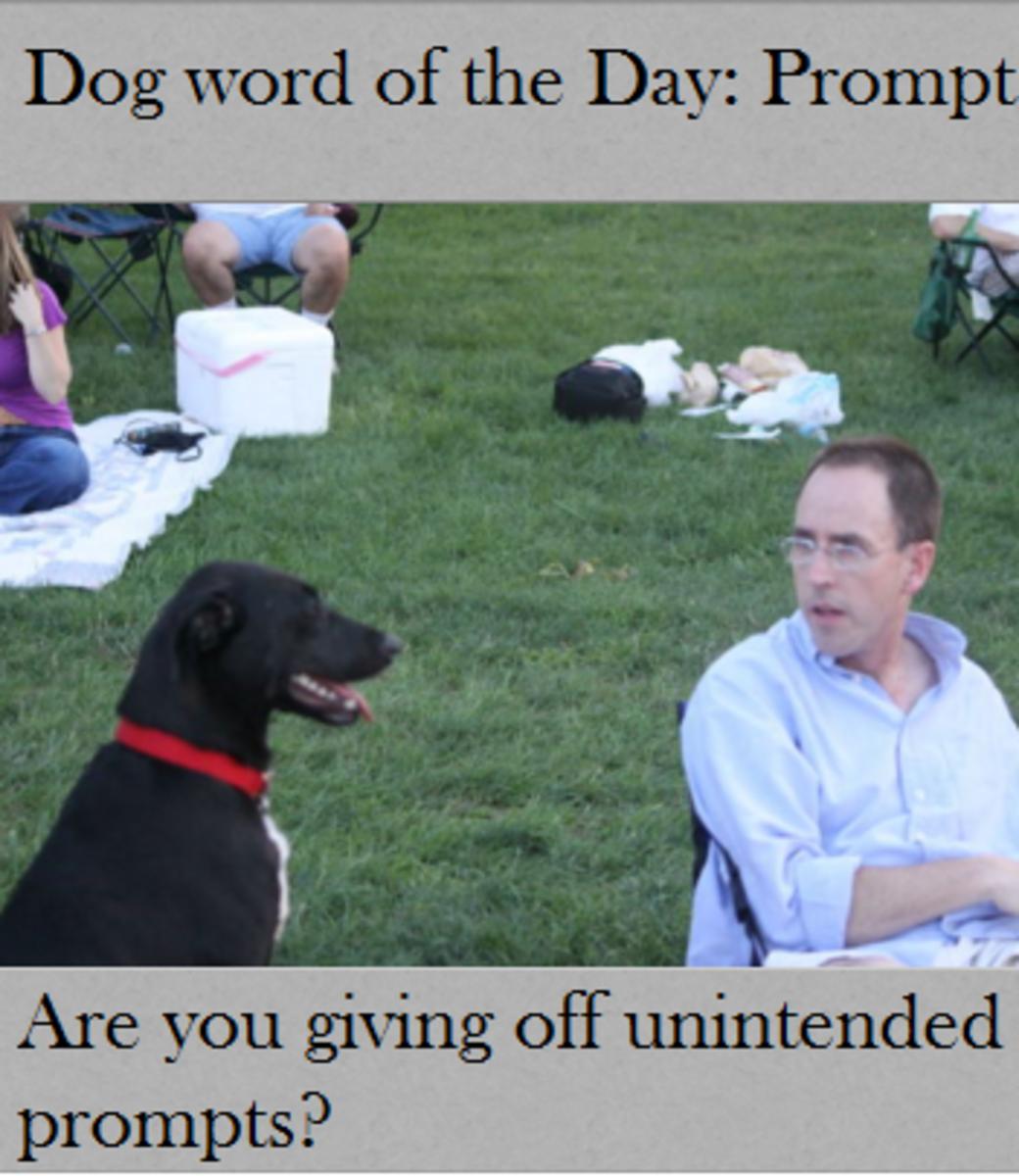 dog prompt