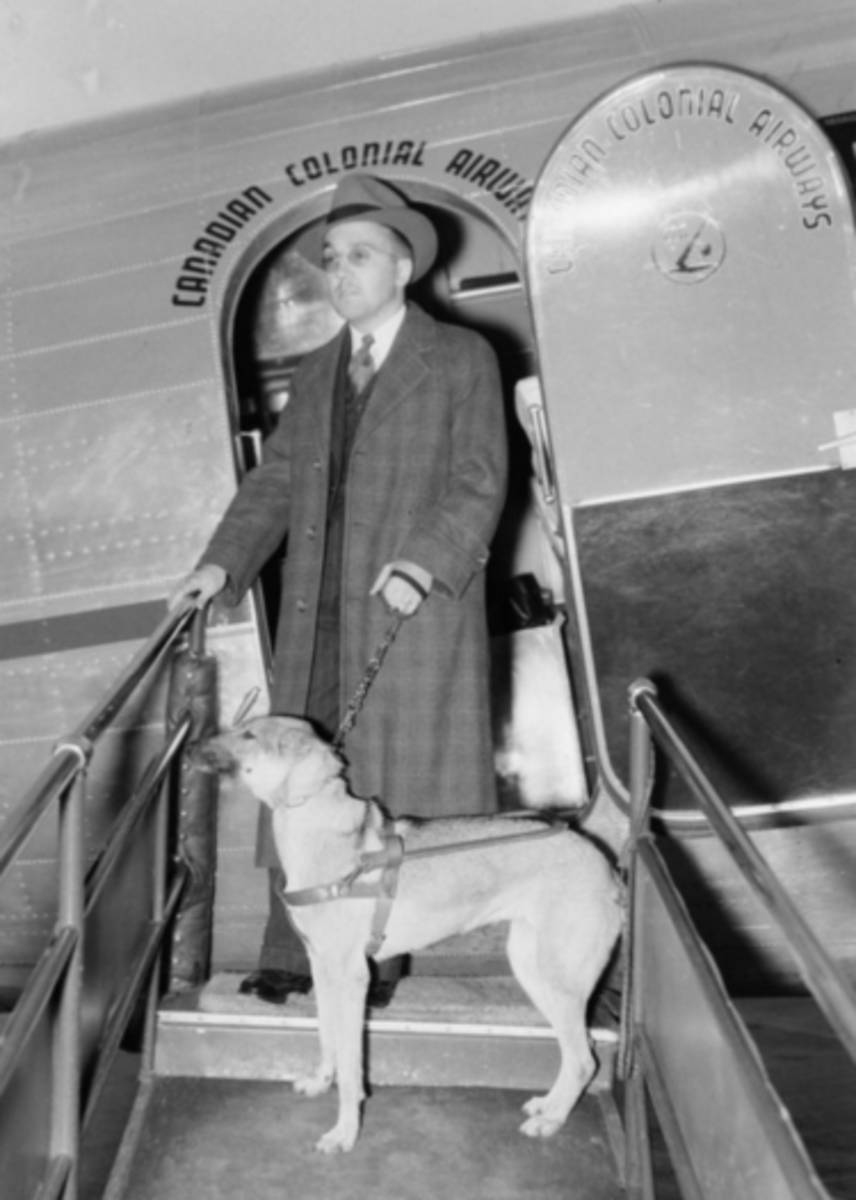 A blind man with his guide dog in Montreal, 1941.