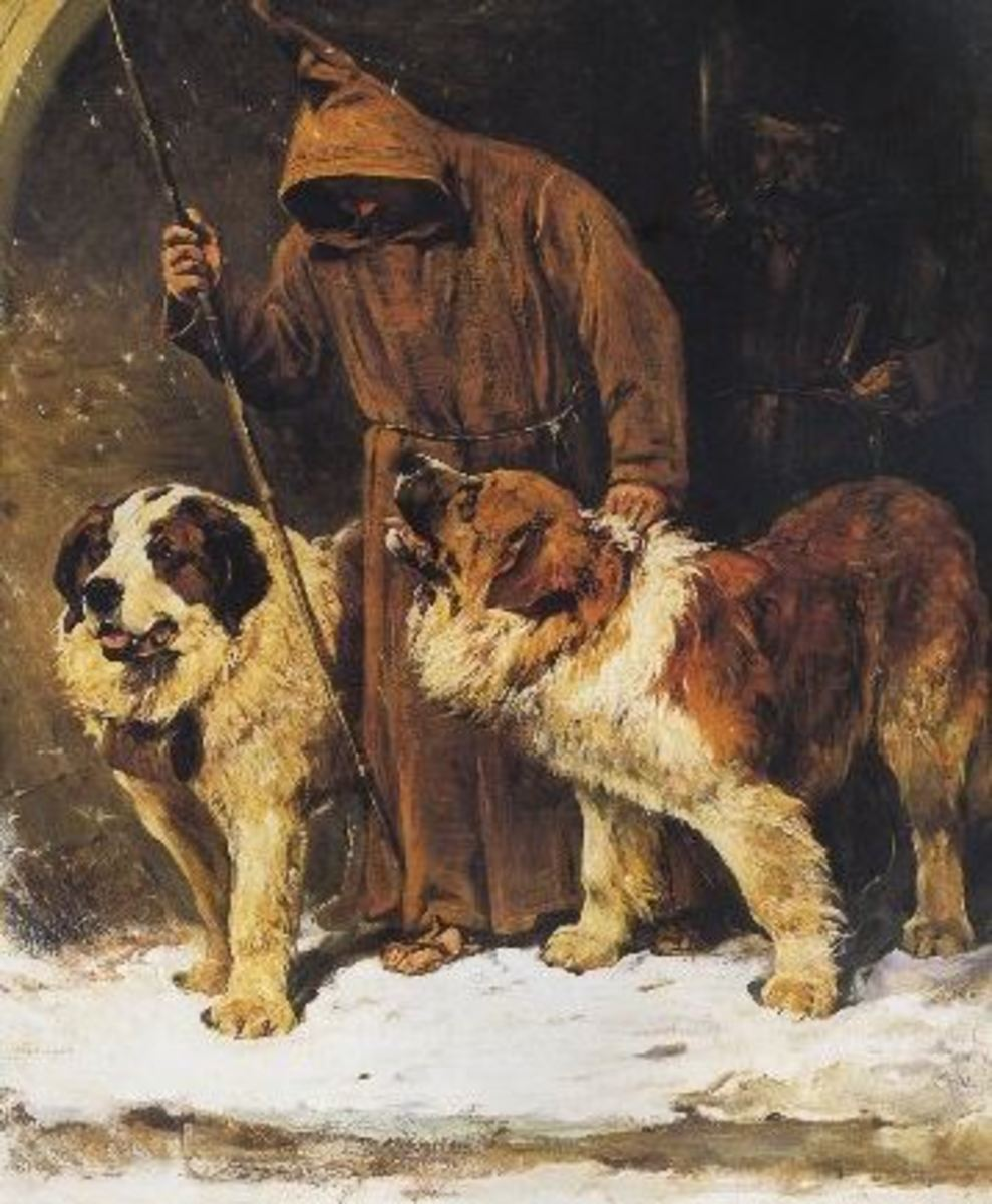 saint-bernard-dog-history