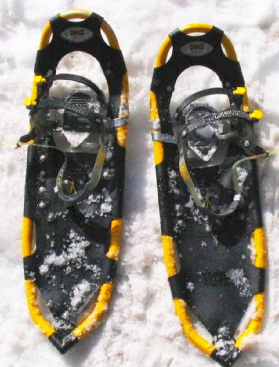 snowshoes for people like snowshoes in dogs