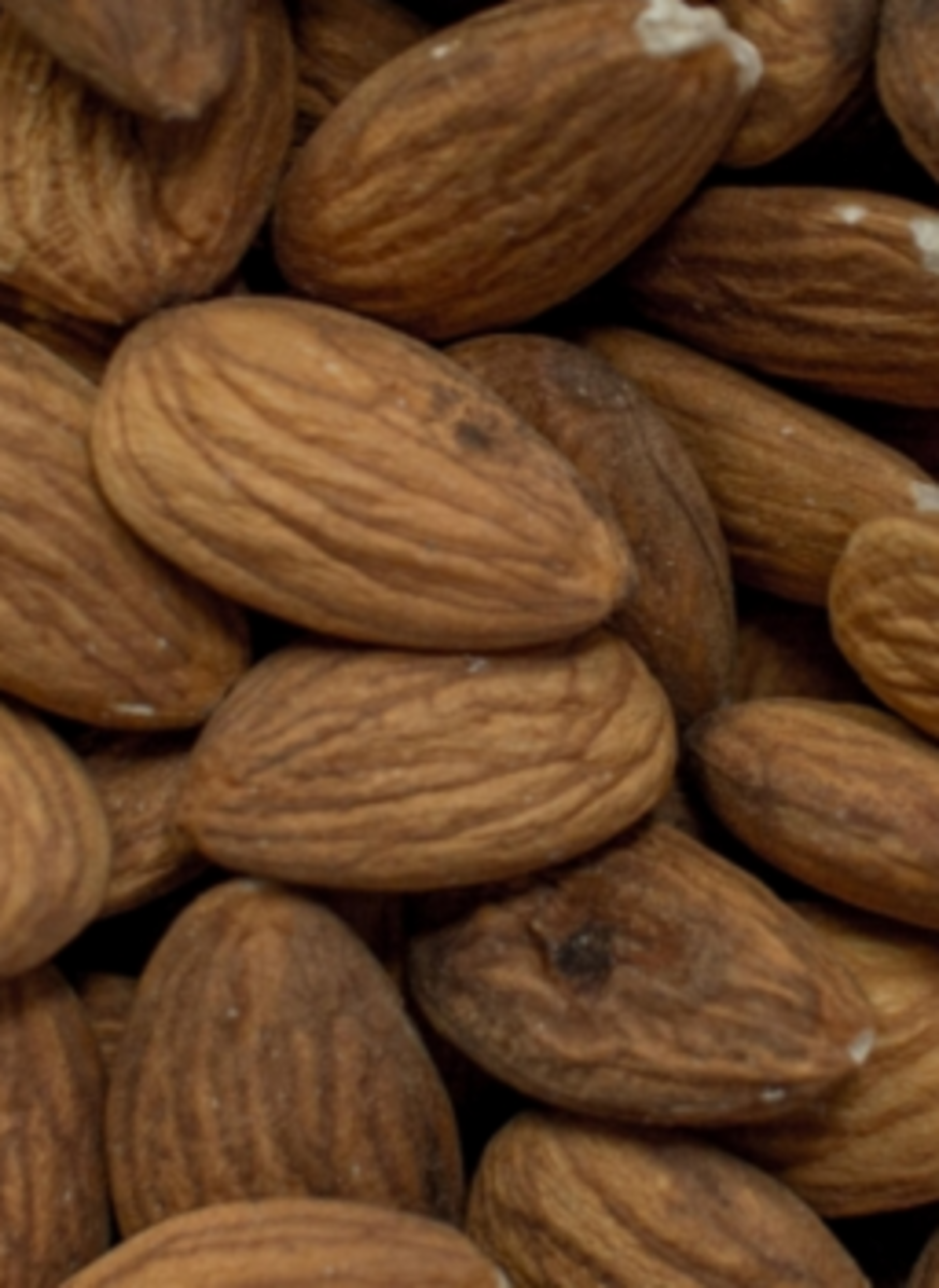 almonds safe for dogs?