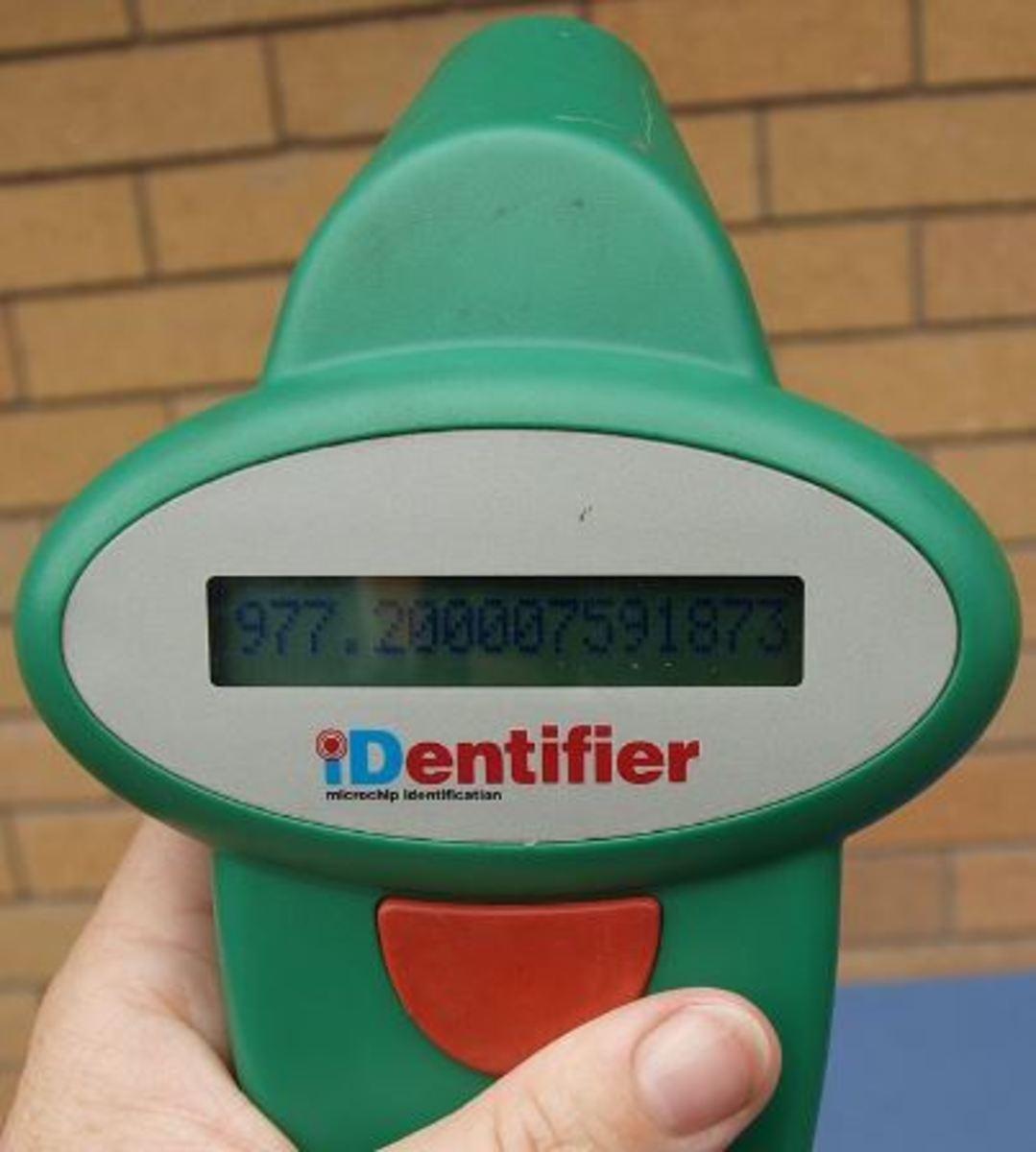 dog-microchip-scanner