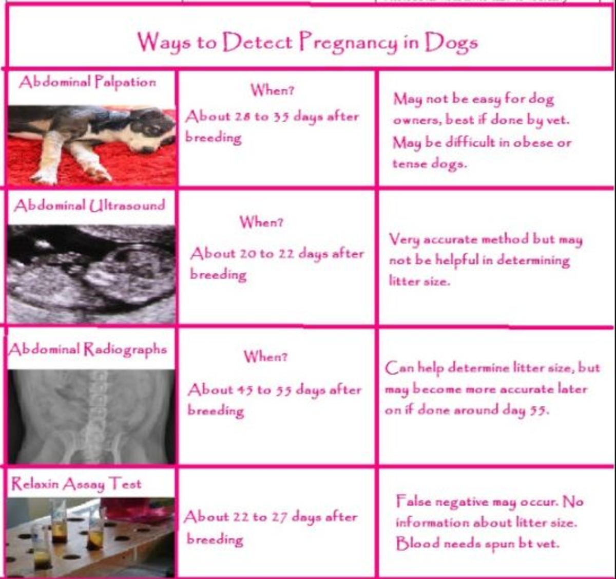 Do Human Pregnancy Tests Work For Dogs Whelping Puppies