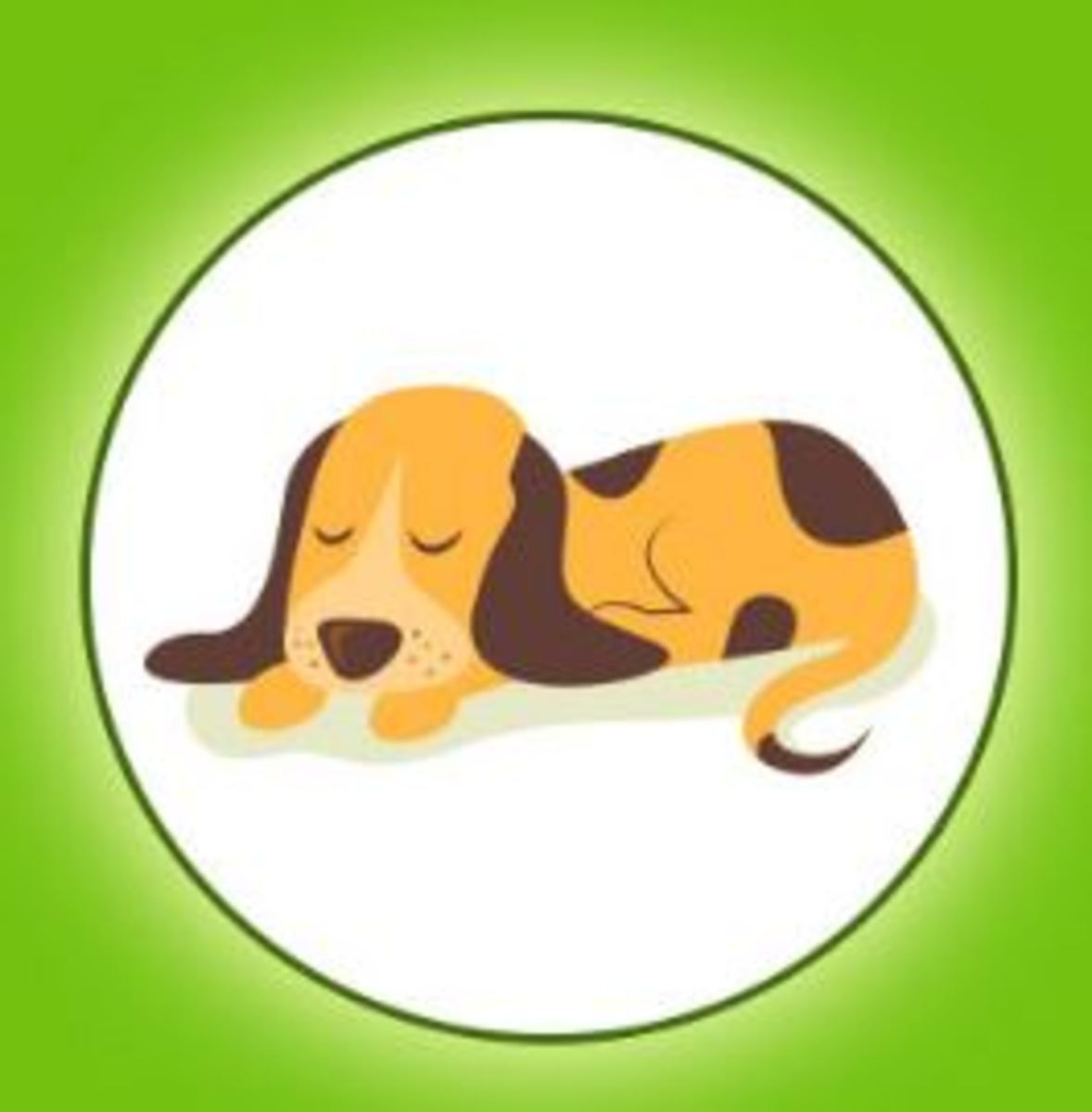 Home Remedies For Dog Dehydration