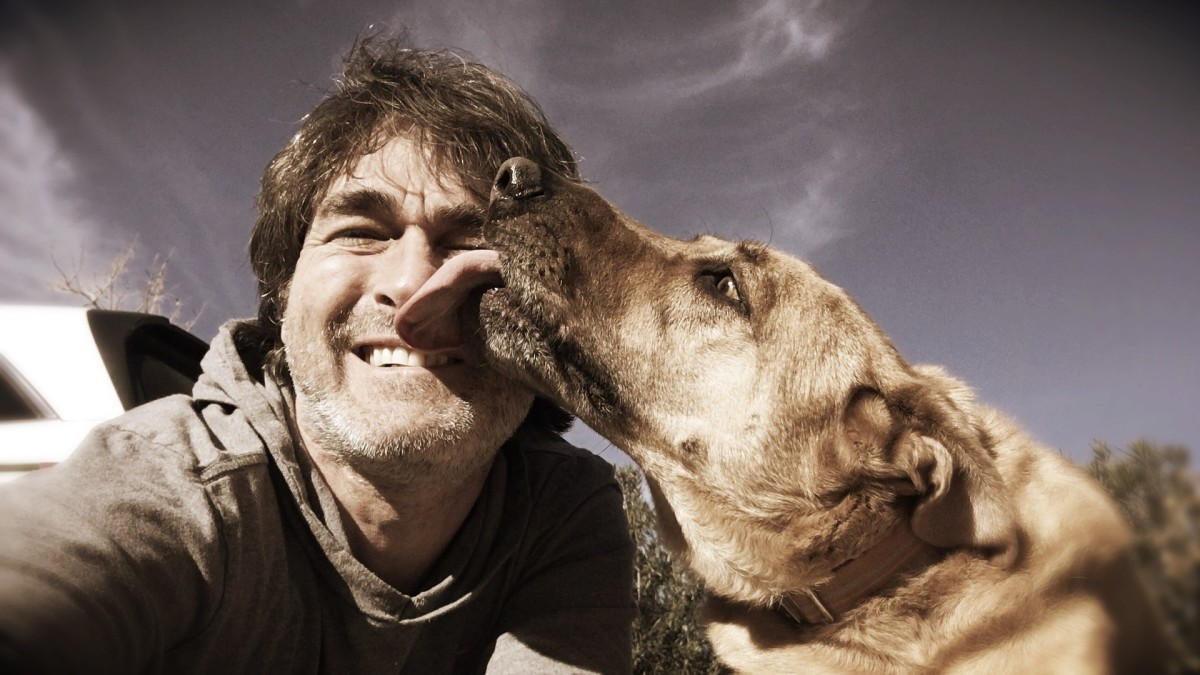 It is natural for dogs to want to greet owners by licking their face.