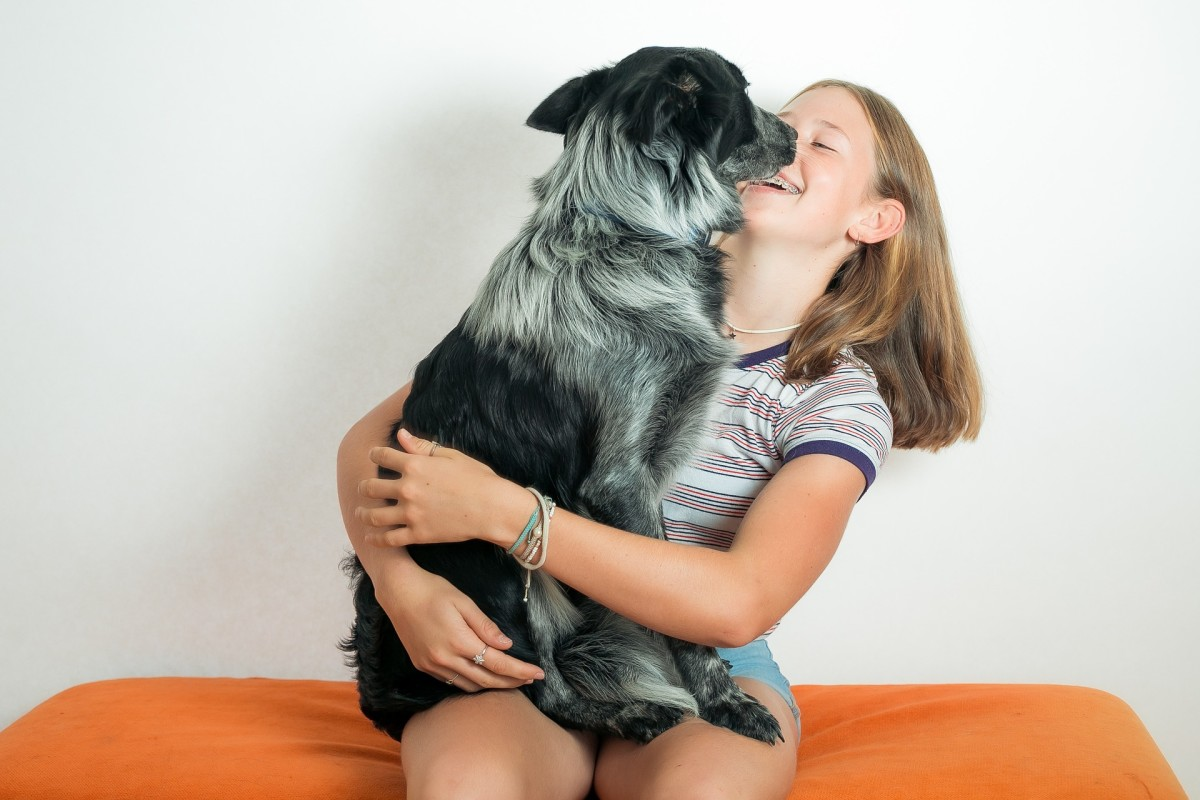 When it comes to dogs who lick babies, toddlers and children's faces, it's important to evaluate what may be going on.