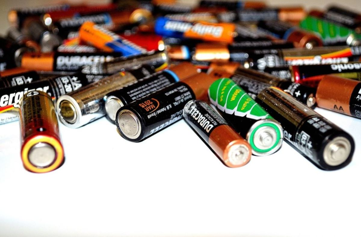 Different batteries cause different dangers in dogs