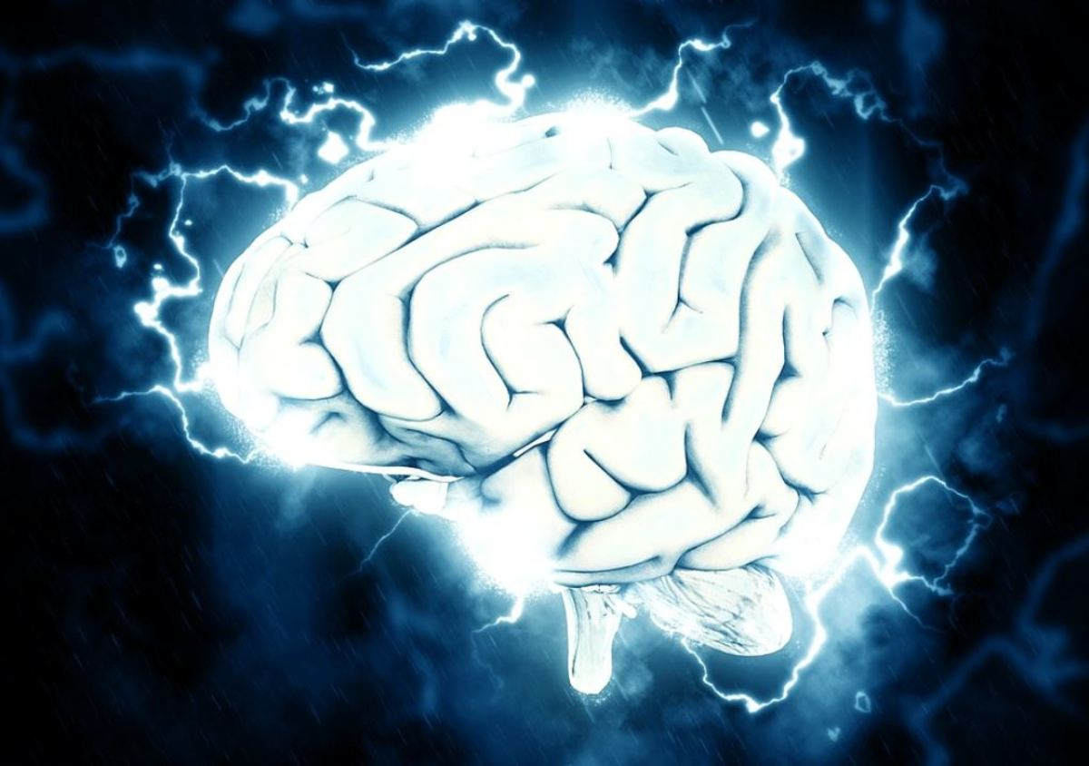 Dopamine is used when the brain sends information to the muscles in order to make them move.